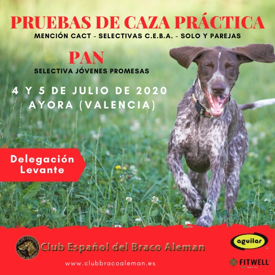 Cartel CP y PAN Levante